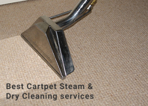 Get Rid Of Dirt and Grim With Carpet Cleaning Services